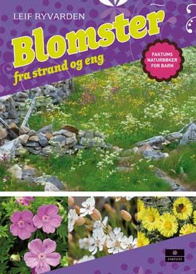 Blomster fra strand og eng - norsk naturleksikon for barn
