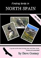 Finding Birds in North Spain
