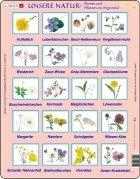 Puslespill - Ville blomster
