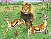 Puslespill - Løve på gasellejakt