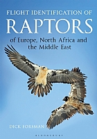Flight Identification of Raptors