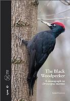 The Black Woodpecker
