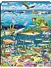 Puslespill - Sjø og alger