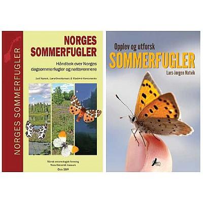 Opplev og utforsk sommerfugler