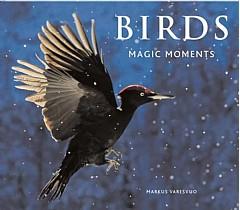 Fuglekasser og fugleforing