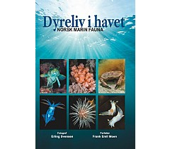 Dyreliv i havet - Tilbud
