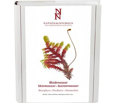 Bladmossor: Skirmossor-baronmossor.  Bryophyta: Hookeria–Anomodon