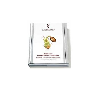 Bladmossor: Kompaktmossor - kapmossor.  Bryophyta: Anoectangium - Orthodontium
