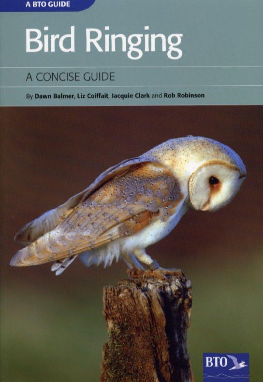 Bird Ringing Studies in Avian Biology