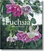 Fuchsia - Havens ballerina