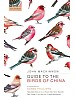 Guide to the Birds of China