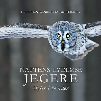Vinterfugler og Nattens lydløse jegere