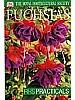 RHS Fuchsias