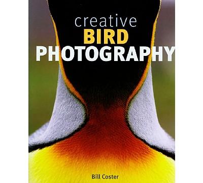 Fuglefotografering