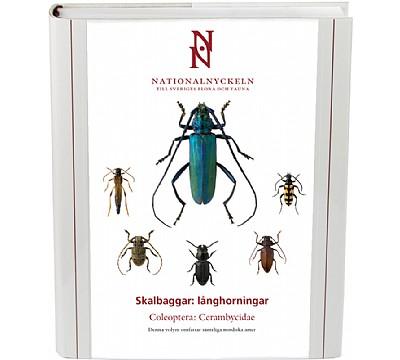Skalbaggar: Långhorningar. Coleoptera -Cerambycidae